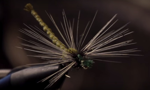 deer hair antron fly tying damselfly dragonfly dragon damsel fishing trout bass brook rainbow brown smallmouth panfish bluegill pumpkinseed longear