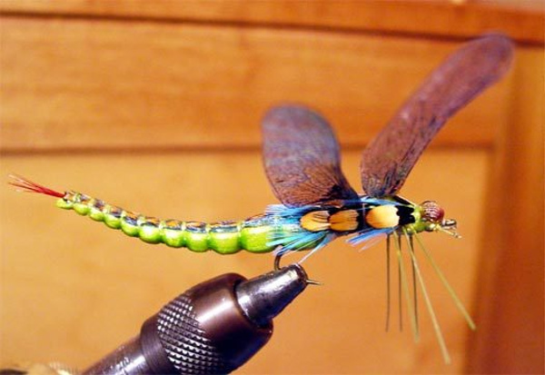 dragon fly bluegill realistic wings yellow panfish sunfish pumpkinseed longear smallmouth bass trout